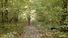 Uma menina corre no parque a menina corre através do parque do outono vídeos de arquivo