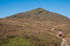 Uma menina de caminhada e o pico Fotografia de Stock