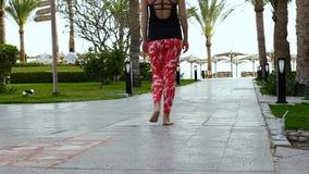 Uma menina delgada nova anda lentamente entre as palmeiras ao longo do trajeto ao mar Morena com nádegas apertadas video estoque