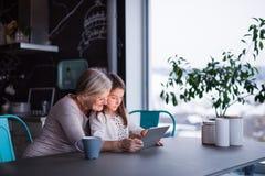 Uma menina e uma avó pequenas com tabuleta em casa Foto de Stock Royalty Free