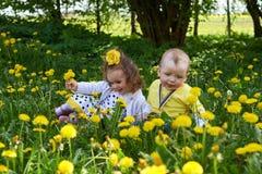Uma menina e um rapaz pequeno colhem flores amarelas imagens de stock royalty free
