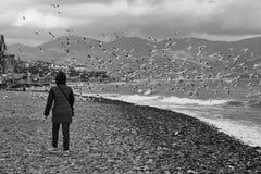 Uma menina em um banco rochoso que olha as gaivotas do voo Novorossiysk, Rússia Imagem de Stock