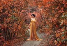 Uma menina em um vestido do vintage imagem de stock