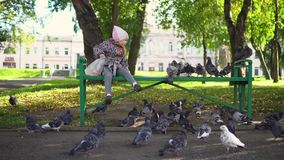 Uma menina está alimentando pombos em um parque do outono video estoque