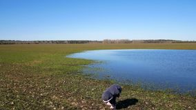 Uma menina está andando perto do lago na primavera video estoque