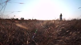 Uma menina está imóvel em um campo, em torno de uma grama amarela, queimada, similar para amarelar o trigo O vento move-se, traçõ vídeos de arquivo