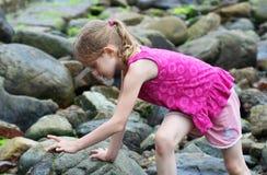 Uma menina faz uma descoberta Fotos de Stock Royalty Free