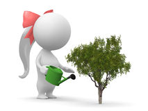 Uma menina molha a planta Imagem de Stock
