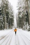 uma menina na floresta do inverno fotografia de stock royalty free