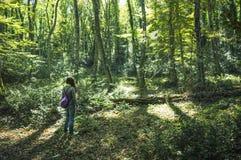 Uma menina nas madeiras Imagem de Stock Royalty Free