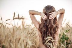 Uma menina no campo ajusta seu cabelo, um torso despido, uma mulher moreno com cabelo longo Campo de trigo, a ideia do inquietaçã Imagem de Stock Royalty Free