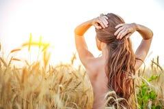 Uma menina no campo ajusta seu cabelo, um torso despido, uma mulher moreno com cabelo longo Campo de trigo, a ideia dos cuidados  Imagens de Stock
