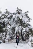 Uma menina nova, bonita levanta sob frentes cobertos de neve grandes de um pinho foto de stock
