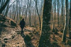 Uma menina que anda através de uma floresta fotografia de stock royalty free