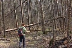 Uma menina que anda através do pântano nas madeiras Fotografia de Stock Royalty Free