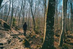 Uma menina que anda em uma paisagem outonal imagens de stock