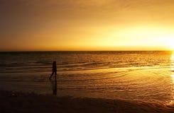 Uma menina que anda no beira-mar durante o por do sol Imagem de Stock