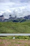 Uma menina que anda no prado Imagens de Stock
