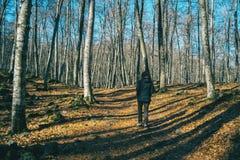Uma menina que caminha através das sombras das árvores imagens de stock