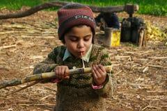 Uma menina que mastiga a cana-de-açúcar Foto de Stock Royalty Free
