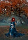 Uma menina que ruivo misteriosa do guerreiro os suportes guardam sobre sua terra, uma princesa corajoso mantém uma curva e as set fotografia de stock