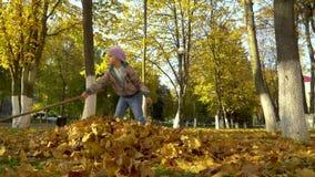 Uma menina recolhe em uma pilha, caída das árvores, as folhas video estoque
