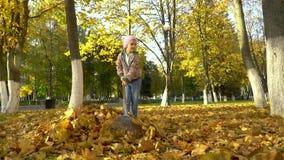 Uma menina recolhe em uma pilha, caída das árvores, as folhas filme