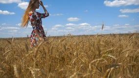 Uma moça encantador em olhares de um campo de trigo na câmera corrige o cabelo filme