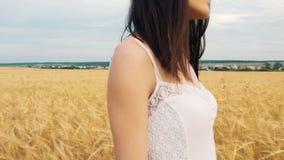 Uma moça está em um campo de trigo dourado no por do sol e levanta suas mãos acima, movimento lento video estoque