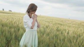 Uma moça que rezam em um campo de trigo, uma mulher entre as orelhas de milho que apreciam a natureza e que agradecem ao deus, um vídeos de arquivo