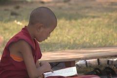 Uma monge nova em Bodhgaya Imagens de Stock