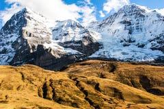 Uma montagem grande da neve e uma grama amarela Imagem de Stock Royalty Free