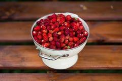 Uma morango deliciosa Bagas maduras Nós recolhemos morangos Imagens de Stock Royalty Free