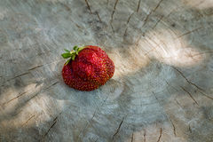 Uma morango em uma superfície de madeira clara Fotografia de Stock Royalty Free