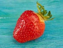 Uma morango madura Fotografia de Stock Royalty Free