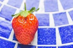 Uma morango no azul Foto de Stock