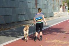 Uma mulher anda um cão fotografia de stock