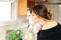Uma mulher bonita e um cão pekingese Foto de Stock Royalty Free