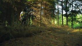 Uma mulher com uma trouxa em uma floresta densa pisa sobre uma árvore caída Tiro da parte traseira filme