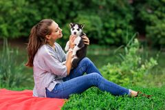 Uma mulher de sorriso bonita com um rabo de cavalo e vestir uma camisa listrada está afagando com um cachorrinho ronco doce ao de imagem de stock