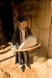 Uma mulher do arroz da limpeza do grupo étnico de Hmong Fotos de Stock Royalty Free