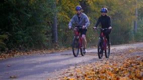 Uma mulher e um homem que montam uma bicicleta um o dia do outono Foto de Stock Royalty Free