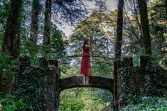 Uma mulher em uma ponte em uma floresta luxúria em Sintra, Portugal foto de stock