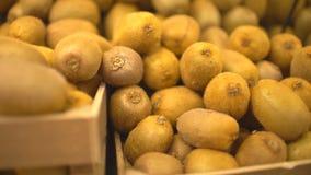 Uma mulher em um supermercado em uma prateleira vegetal, em vegetais das compras e em frutos Fruta de quivi video estoque