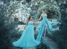 Uma mulher grande bonita está guardando uma menina loura frágil em sua mão Duas princesas em vestidos azuis luxuosos contra fotos de stock
