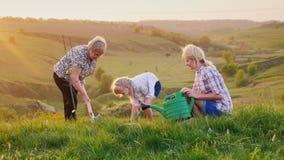 Uma mulher idosa com sua filha e a neta plantam junto uma árvore Em um lugar pitoresco antes do por do sol vídeos de arquivo
