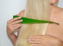 Uma mulher loura aplicou o aloés vera a seu cabelo Cosméticos naturais para o cabelo fotos de stock