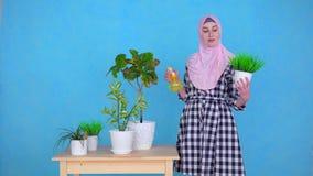 Uma mulher muçulmana nova em um hijab pulveriza plantas na tabela em casa, olhares no sorriso da câmera filme