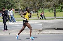 Uma mulher não identificada corre na 27a maratona de Belgrado o 27 de abril de 2014 em Belgrado, Sérvia fotografia de stock