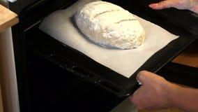 Uma mulher põe no forno uma bandeja de cozimento com uma protuberância da massa da farinha da inteiro-grão P?o do cozimento em ca video estoque